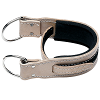 Image of Leather Ankle Strap