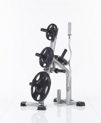 Image of Olympic Plate Tree CXT-255