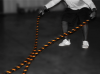 Image of VTX TRAINING ROPES - 50ft