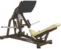 Image of Squat Press